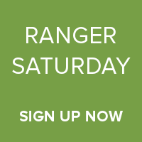 Ranger Saturday Sign Up