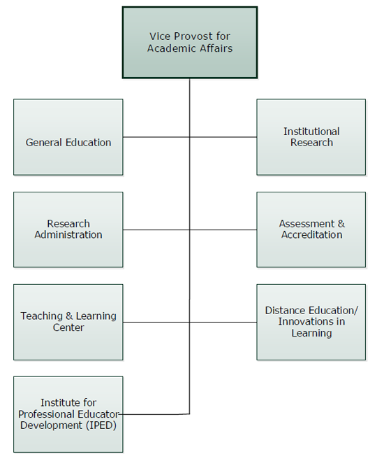 Vice Provost for Academic Affairs Organizational Chart