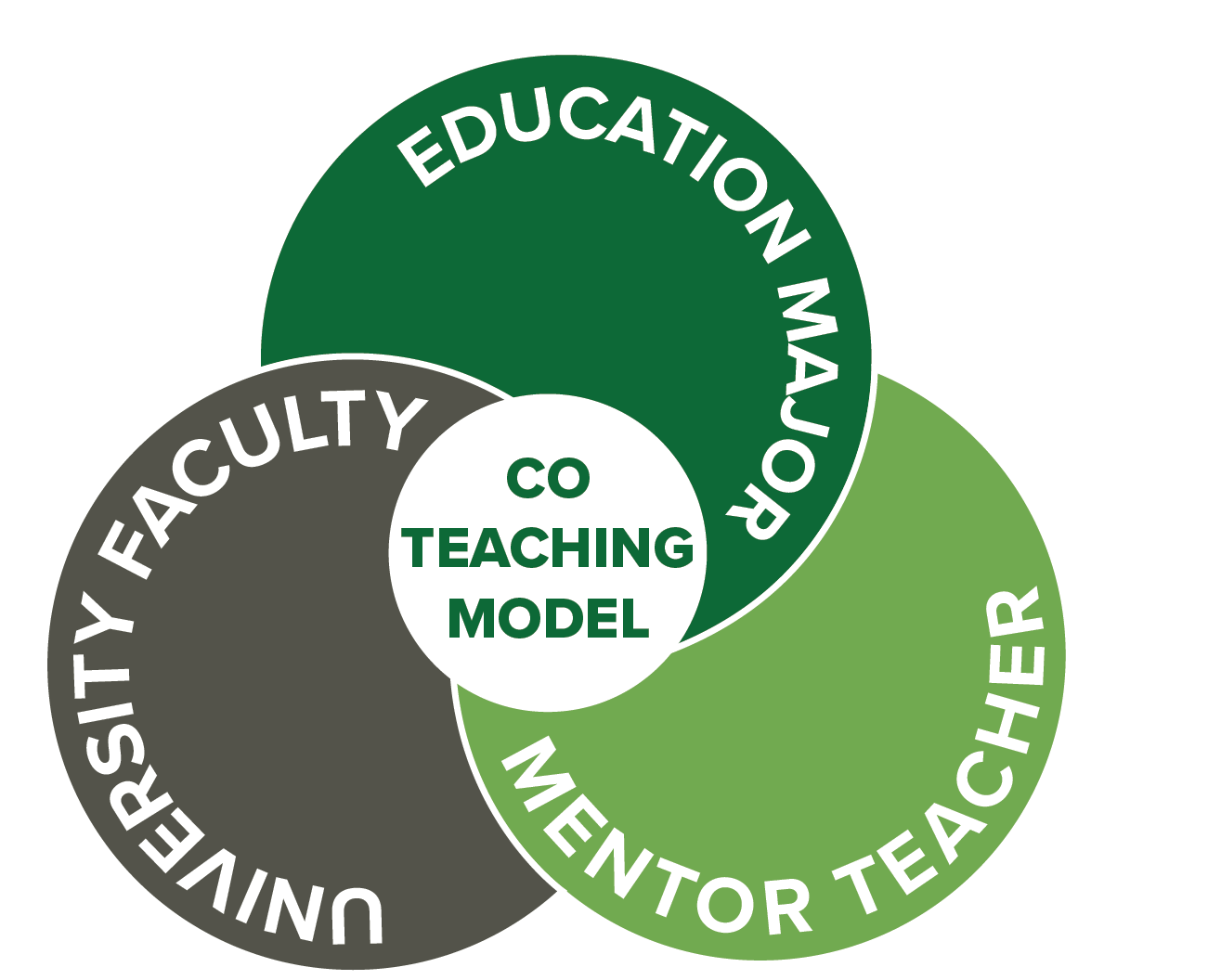Co teaching infographic with three circles representing teacher, ed major and faculty