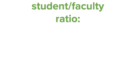 Student/Faculty Ratio 19:1