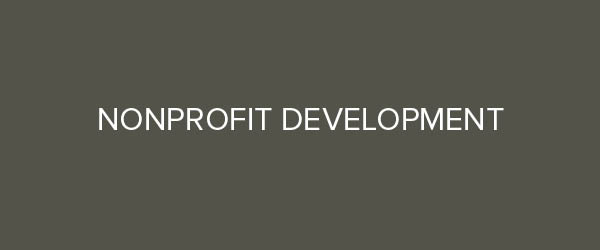 Nonprofit Professional development