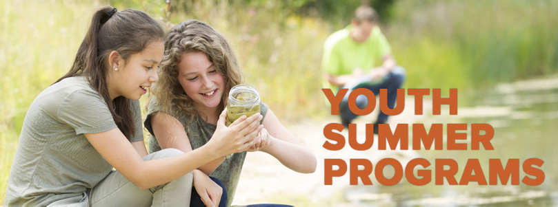 adult education summer courses southcoast