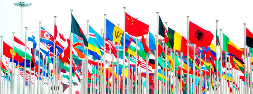 Image result for international studies
